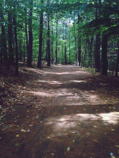 Sunday Hike