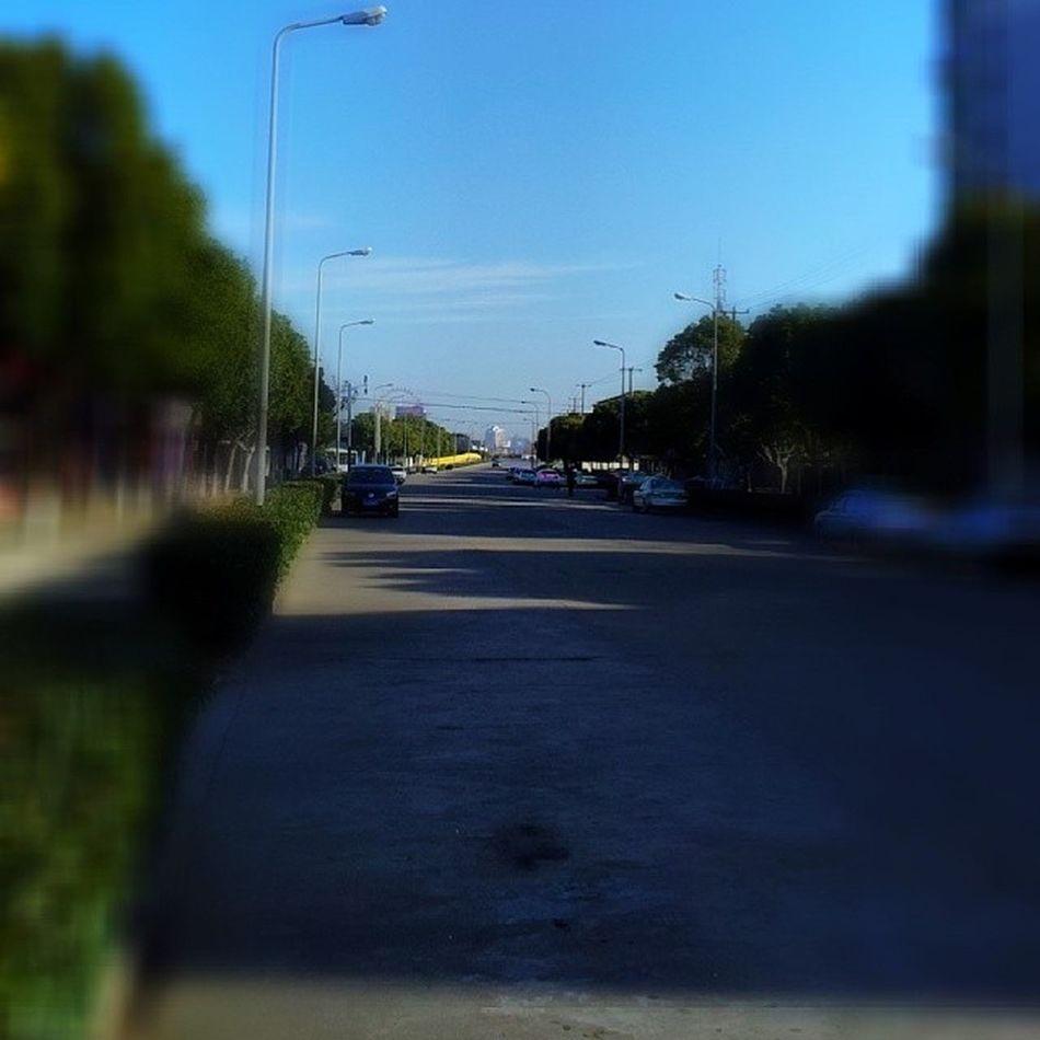 Blur Streetlevel Bluesky Sun Shadow Green Quiet Nature