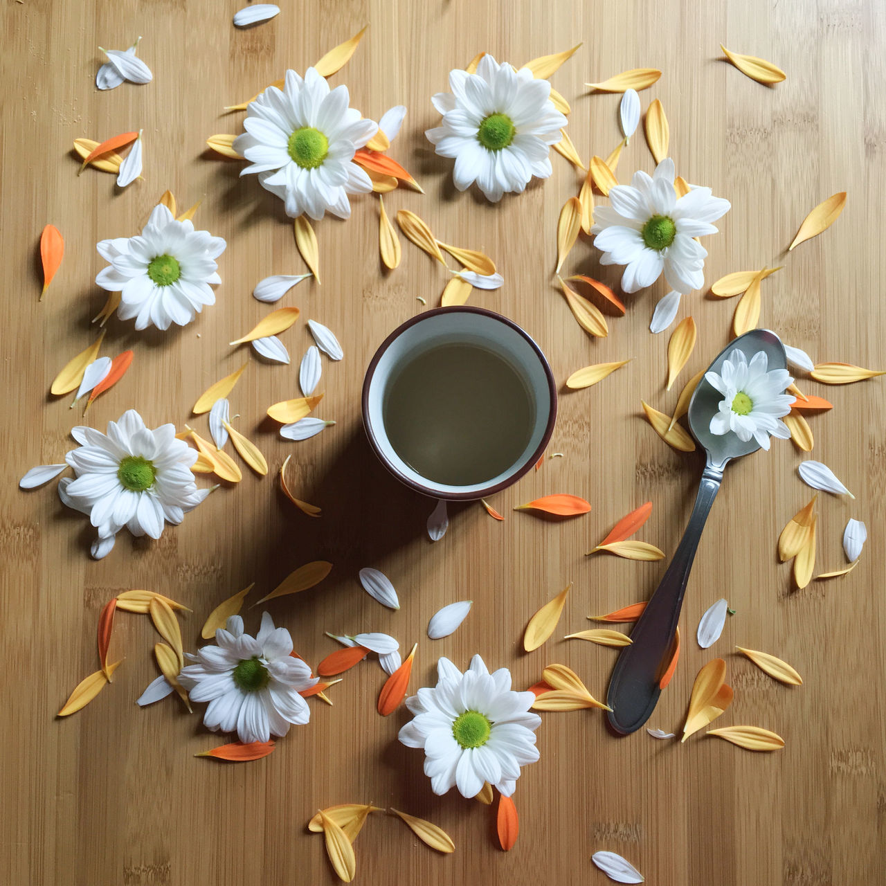 Close-up Cup Daisy Day Drink Flat Lay Flower Flower Arrangement Flower Head Food And Drink Freshness High Angle View Indoors  No People Petal Studio Shot Tea - Hot Drink Tea Cup Wood - Material Wood Grain