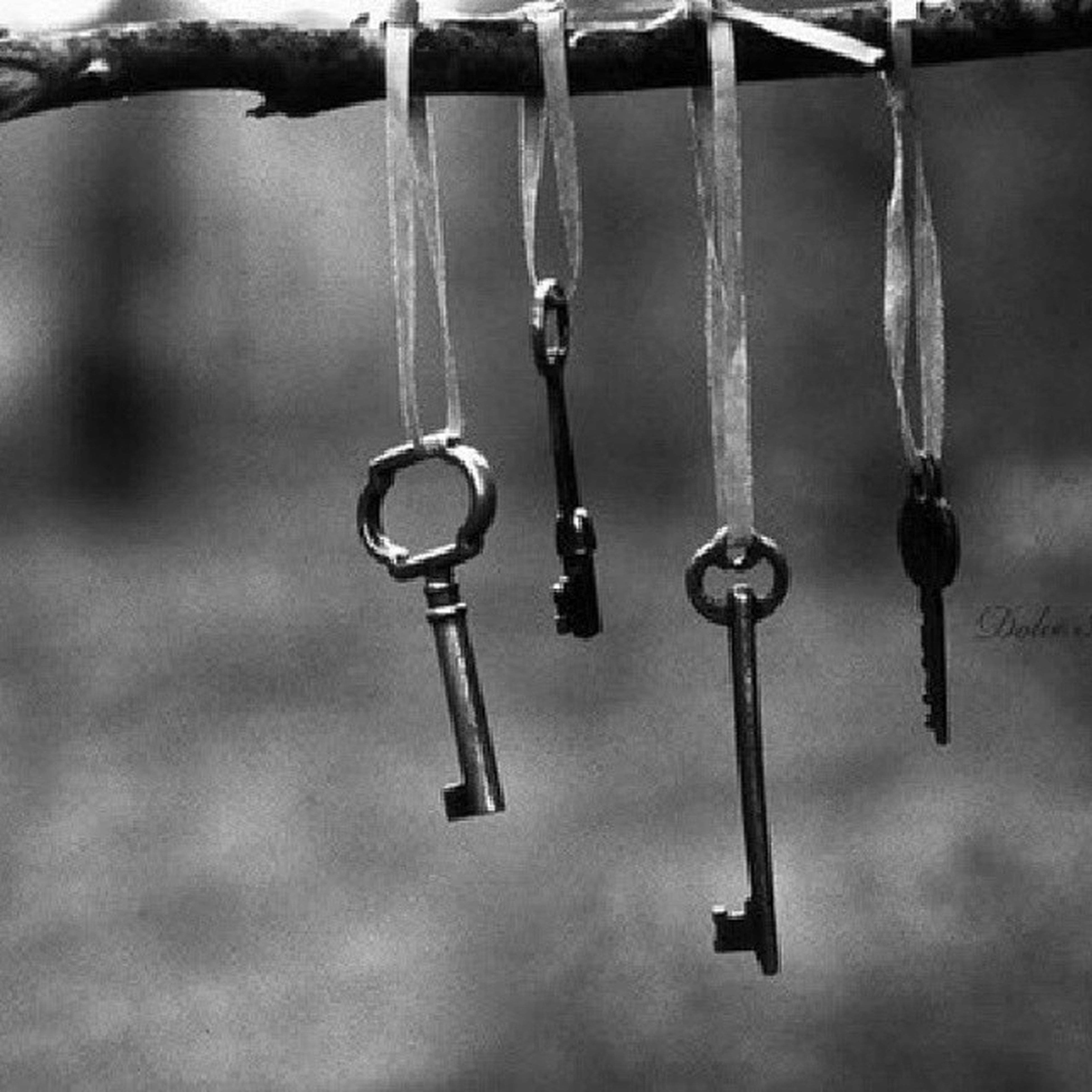 hanging, close-up, indoors, metal, focus on foreground, still life, no people, in a row, reflection, metallic, table, day, selective focus, shiny, simplicity, decoration, group of objects, rope, side by side, water