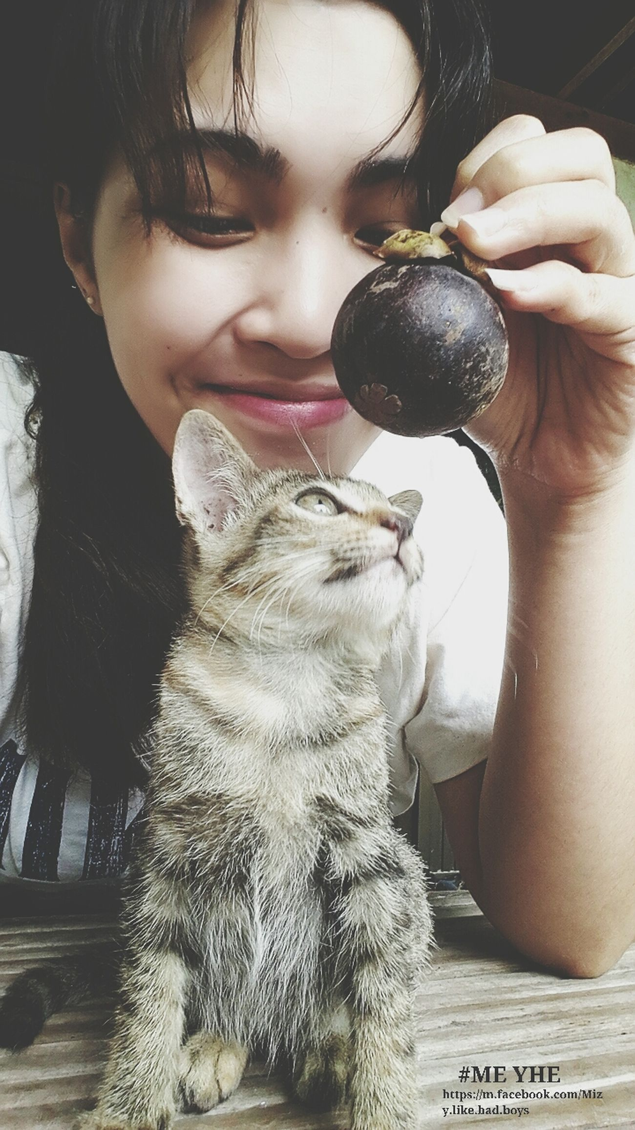Relaxing Cat♡ My Little Cat☺ Hello World #มังคุดกันไหม #กินมังคุดมะคะ #อาคั่ว #ข้าวคั่วน้อยๆ #คิดถึงจังนั่งซึม ?????????????? #แงๆๆๆ
