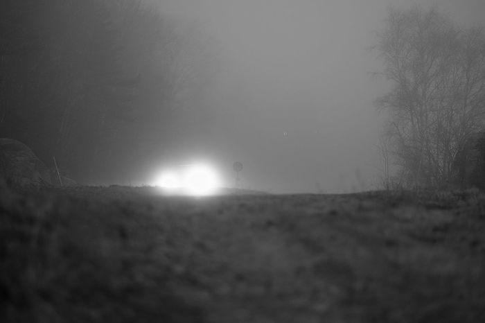 Foggy Morning Fog Dimma Fujifilm X-T1 Monochrome Taking Photos Goodmorning Prime Sweden