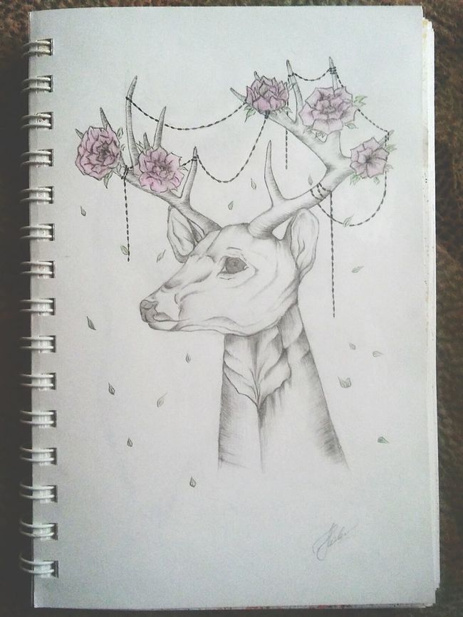 Deer Art, Drawing, Creativity Stylization Art Smeshbuk Diary Sketch Animals
