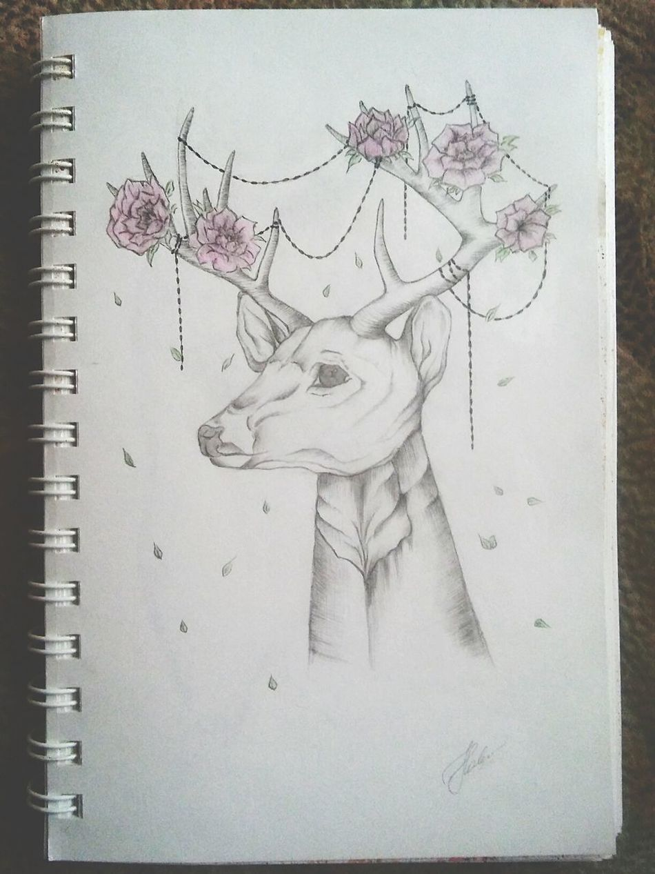 Deer Art, Drawing, Creativity Stylization Art Smeshbuk Diary Sketch Animals