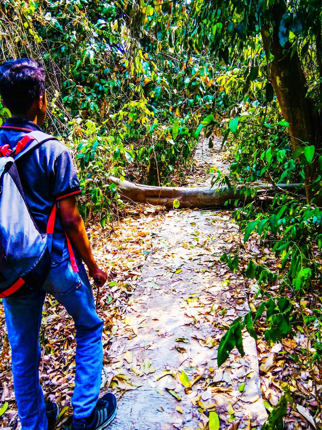 Hiking Adventure Traveling Bantenbanget Explorebanten Jelajah_indonesia
