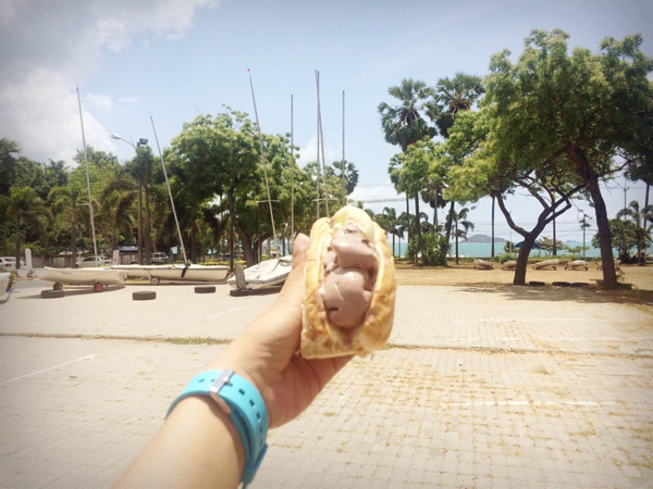 human hand, real people, one person, tree, food and drink, food, human body part, sky, outdoors, day, sweet food, nature, close-up, freshness, people