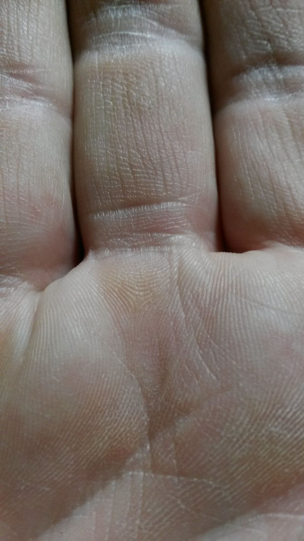 Human Hand Human Body Part Indoors  Close-up Real People One Person Maximum Closeness Wrinkled Skin Fingers Palm Working Hands Working Man Lifeline