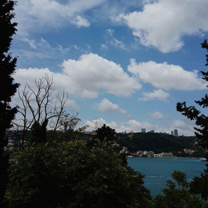 Sky Skyporn Clouds Landscape Vscocam View VSCO