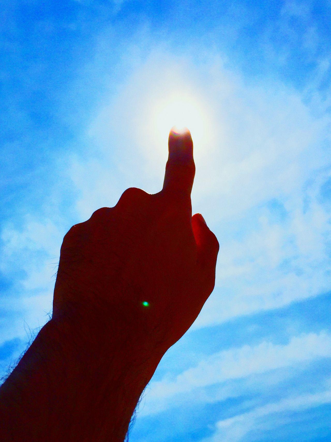 Holiday POV Gai lézard, bois ton soleil! l'heure ne passe que trop vite, et demain il pleuvra peut-être. Frédéric Mistral (1830-1914).