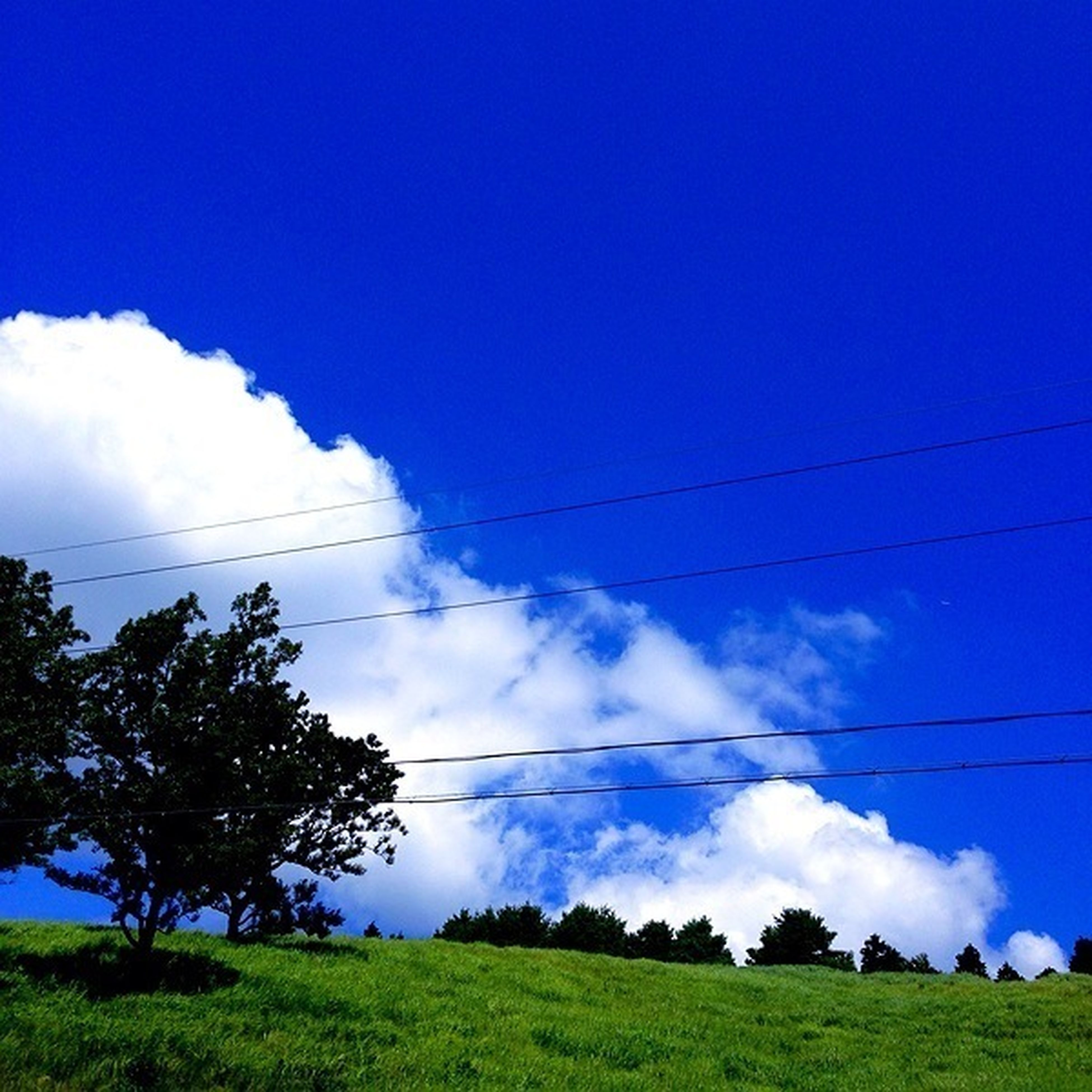 sky, blue, tranquility, landscape, tranquil scene, field, grass, tree, power line, nature, scenics, electricity pylon, beauty in nature, cloud - sky, cloud, electricity, green color, grassy, low angle view, non-urban scene