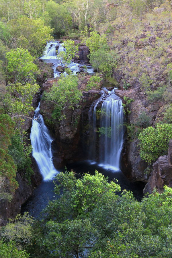 Birds eye view above Florence Falls, Litchfield National Park, Northern Territory, Australia Love Life, Love Photography Blurred Motion Day Flowing Water Forest Freshness Green Color Long Exposure Motion Nature No People Outdoors Plant Rapid River Scenics Tranquil Scene Tranquility Travel Destinations Tree Water Waterfall Florence Falls Litchfield National Park Northern Territory Australia
