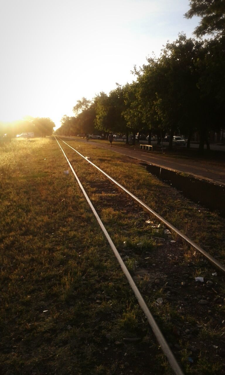 railroad track, rail transportation, transportation, railway track, tranquil scene, tree, tranquility, no people, track, sky, nature, outdoors, grass, landscape, scenics, day, sunset, beauty in nature, clear sky