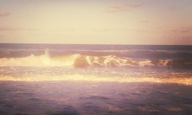Surf Left North Swell Sections