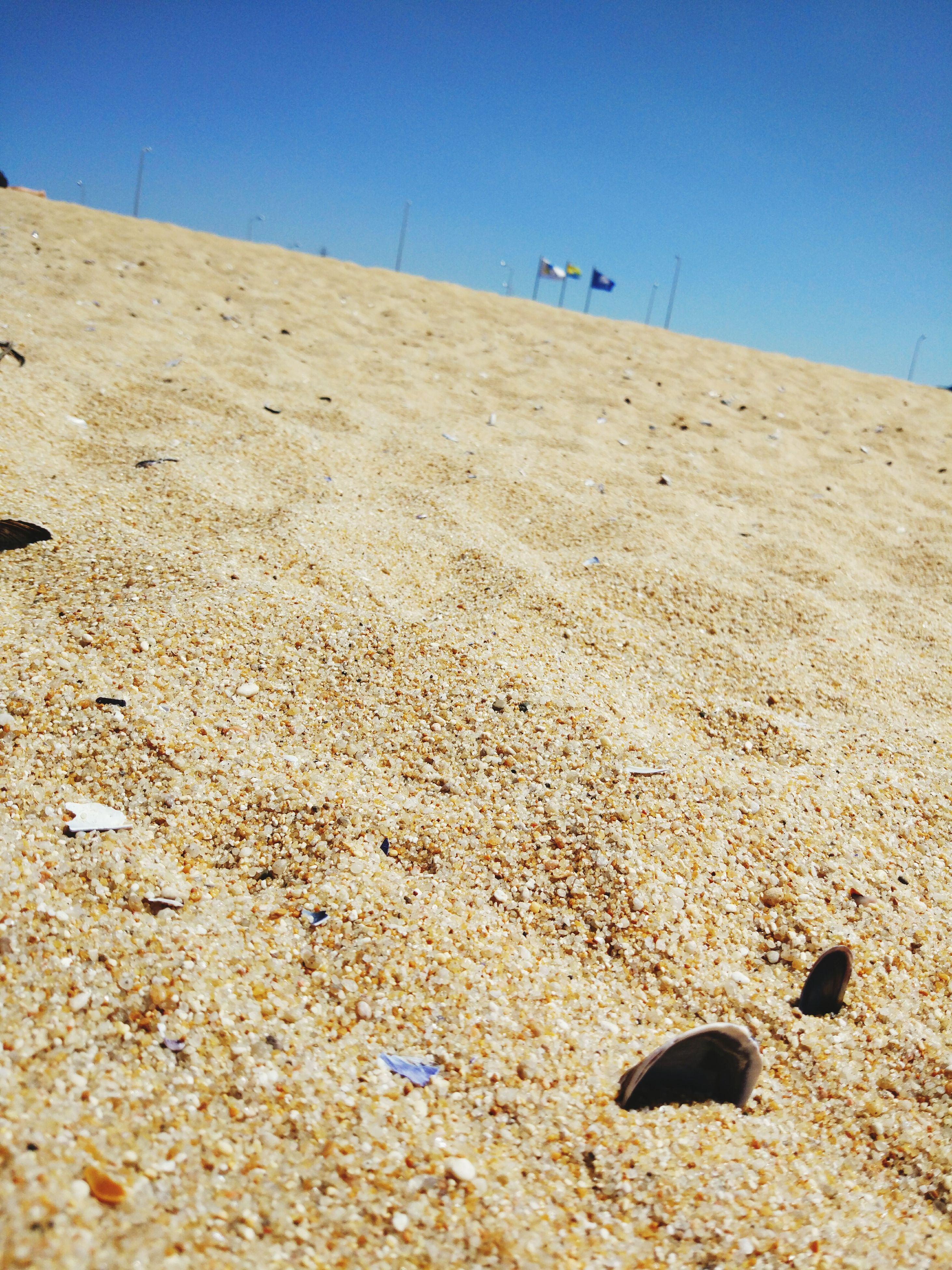 sand, beach, shore, day, outdoors, nature, no people, clear sky, sand dune, beauty in nature, close-up, sky