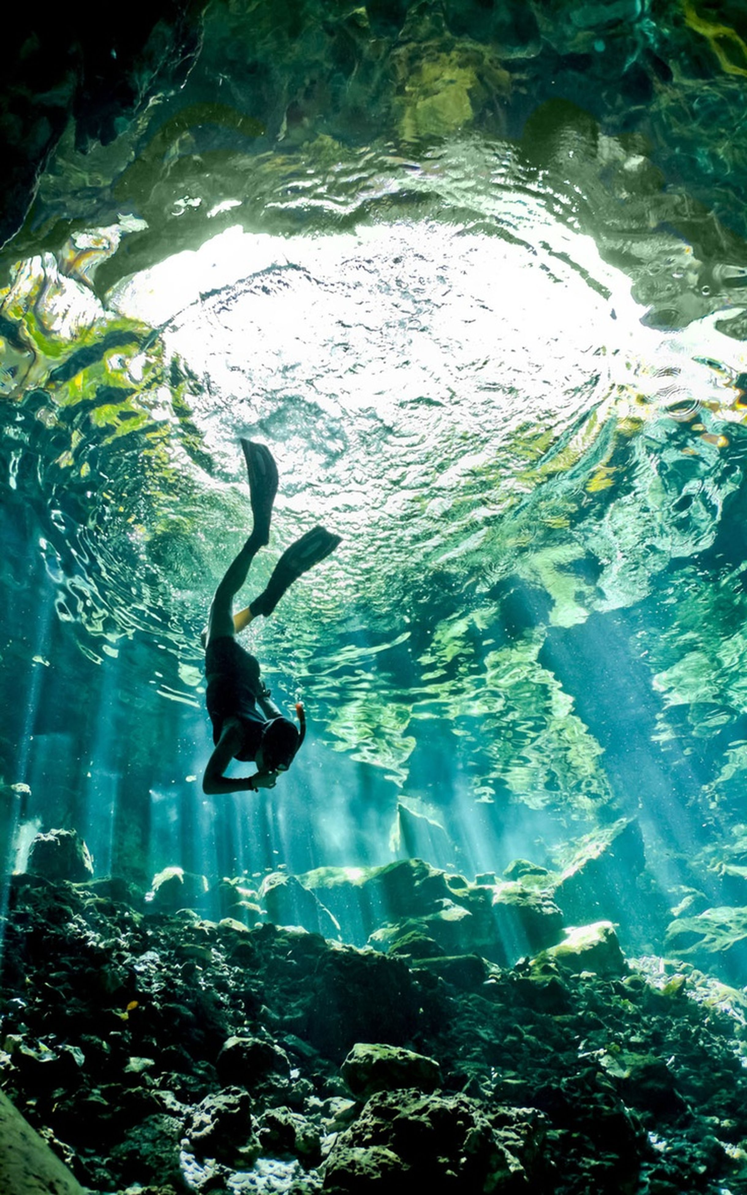 water, swimming, high angle view, nature, lake, waterfront, beauty in nature, motion, full length, reflection, underwater, rippled, animals in the wild, rock - object, day, sunlight, tranquility, outdoors