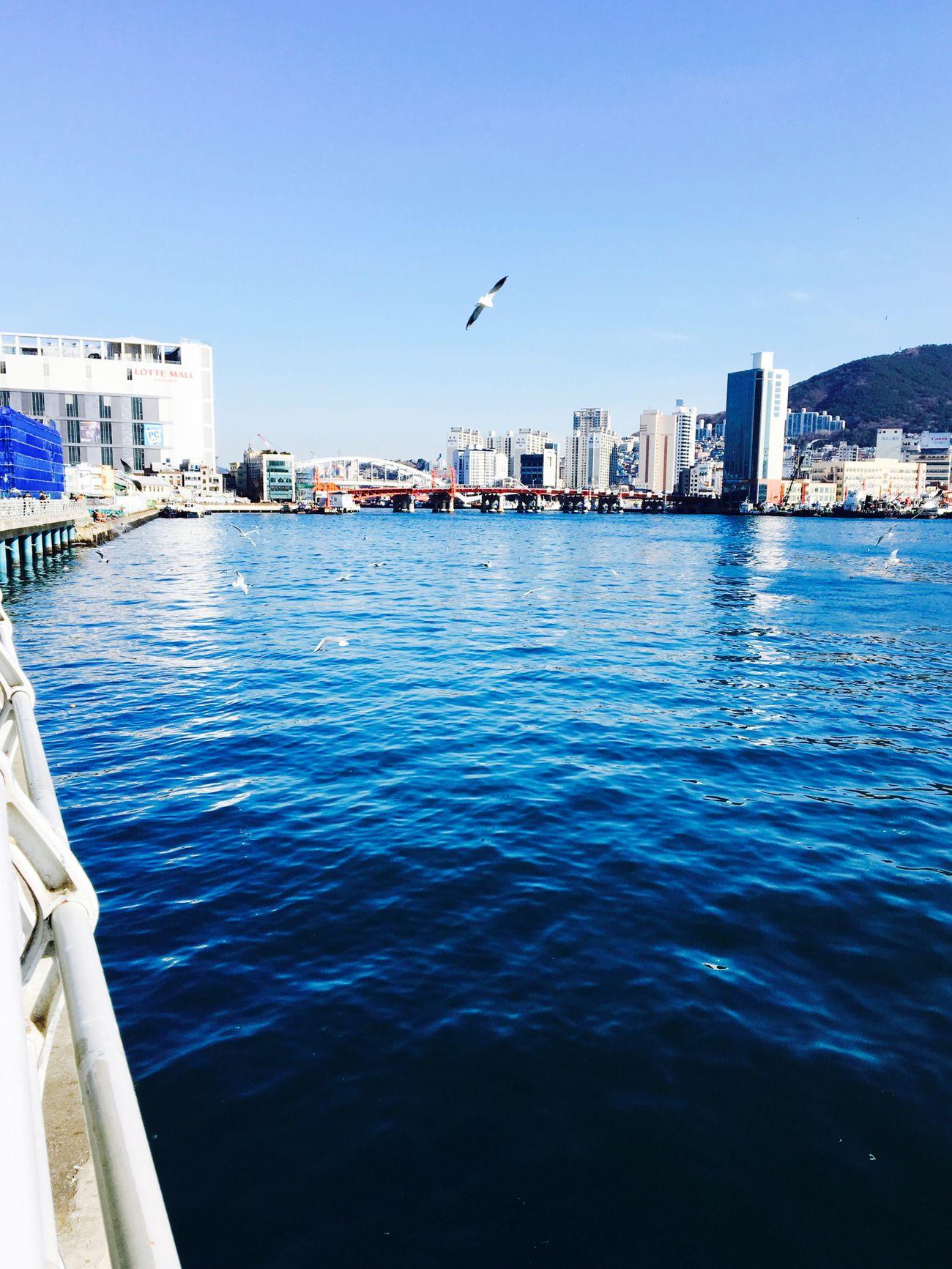 Ocean View Ocean Traveling Eyemphotography Photography In Busan Korea