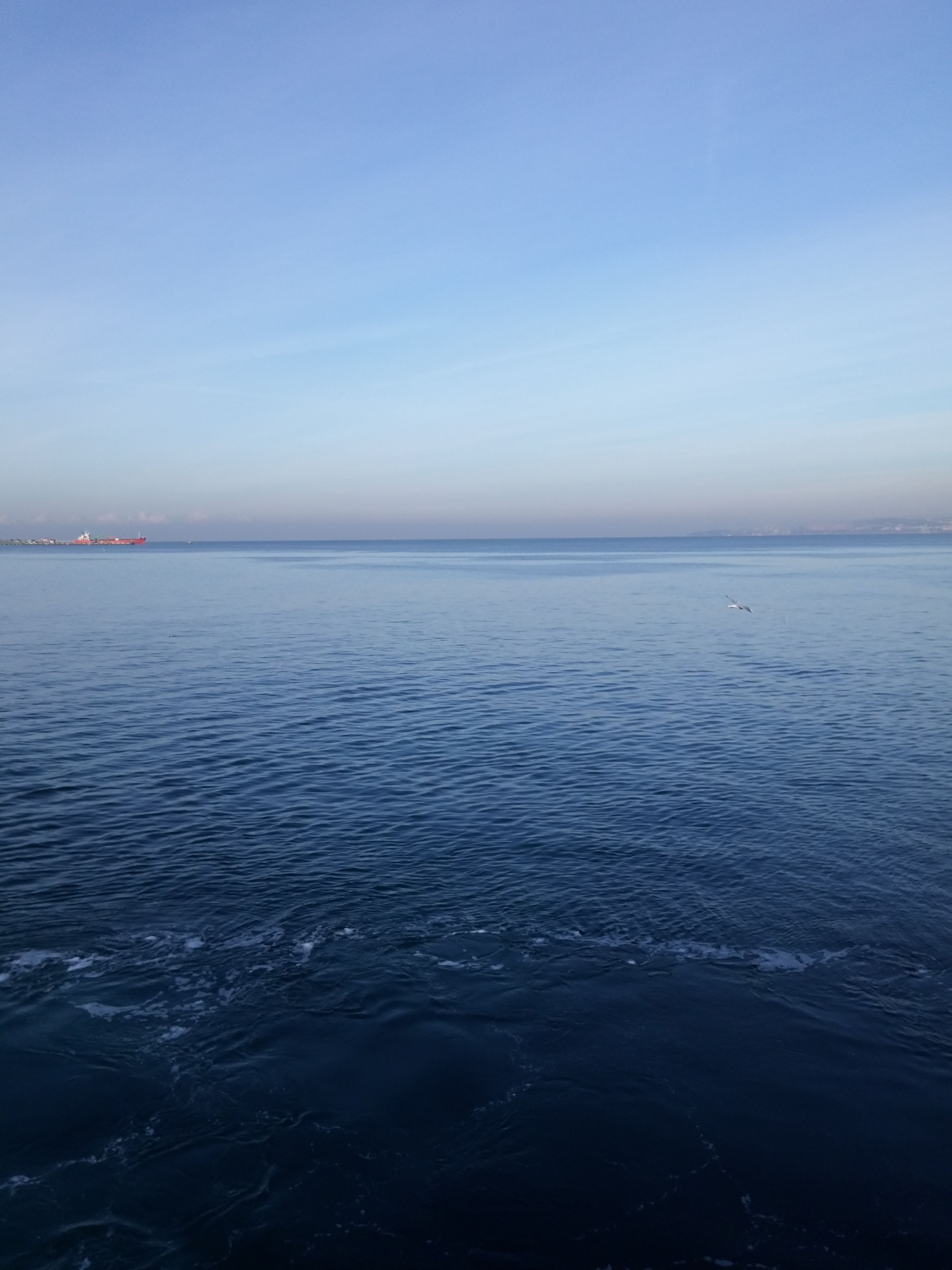 sea, horizon over water, water, tranquility, scenics, tranquil scene, beauty in nature, blue, outdoors, day, sky, nature, no people, clear sky, beach