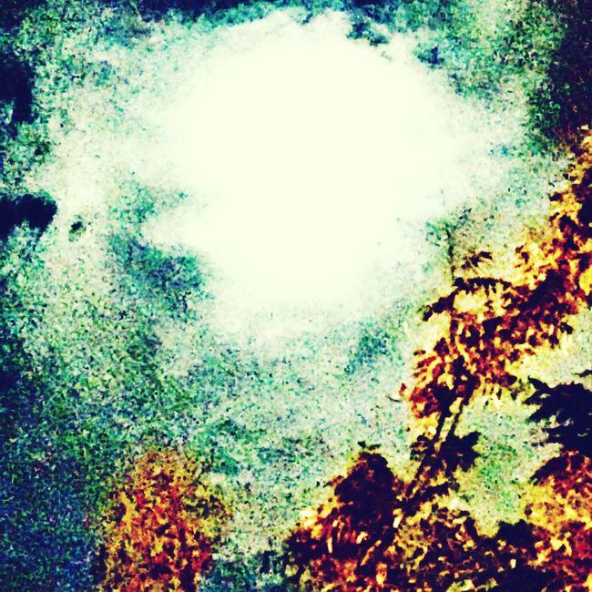 @ojoscomunicantes Bright moon © Ojos Comunicantes Fotografía, 2015
