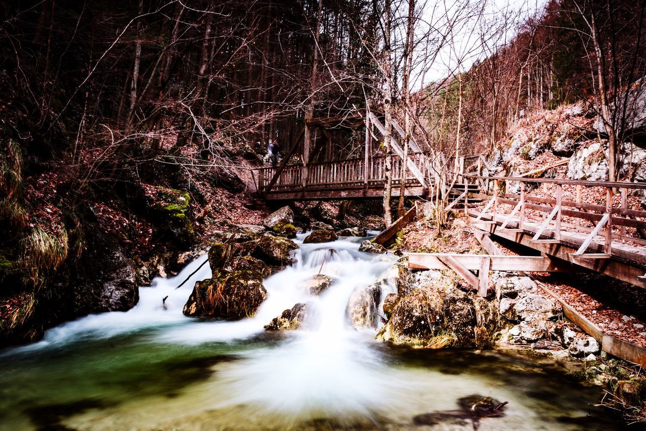 motion, tree, long exposure, nature, water, forest, no people, outdoors, river, waterfall, bridge - man made structure, day, blurred motion, tranquility, beauty in nature, bare tree, scenics