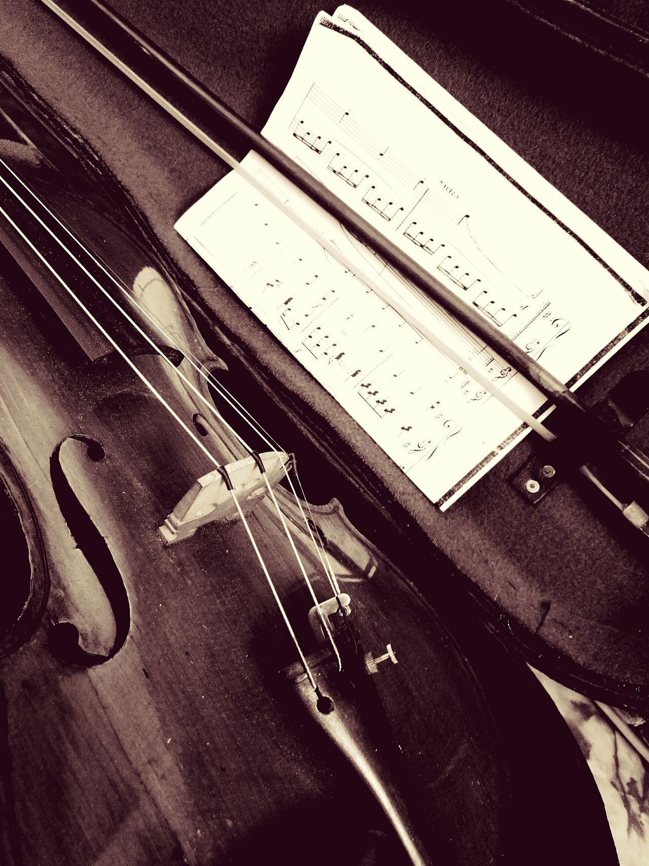High Angle View Musical Instrument Arts Culture And Entertainment Violin Strings Music String Instrument Musical Equipment Violin <3 Violin Wooden Texture Violin Soul Musical Instrument String Music Is My Life Music Time Music Is Life Musik Musical Instruments Music.s Inspiration Musical Notes EyeEmNewHere