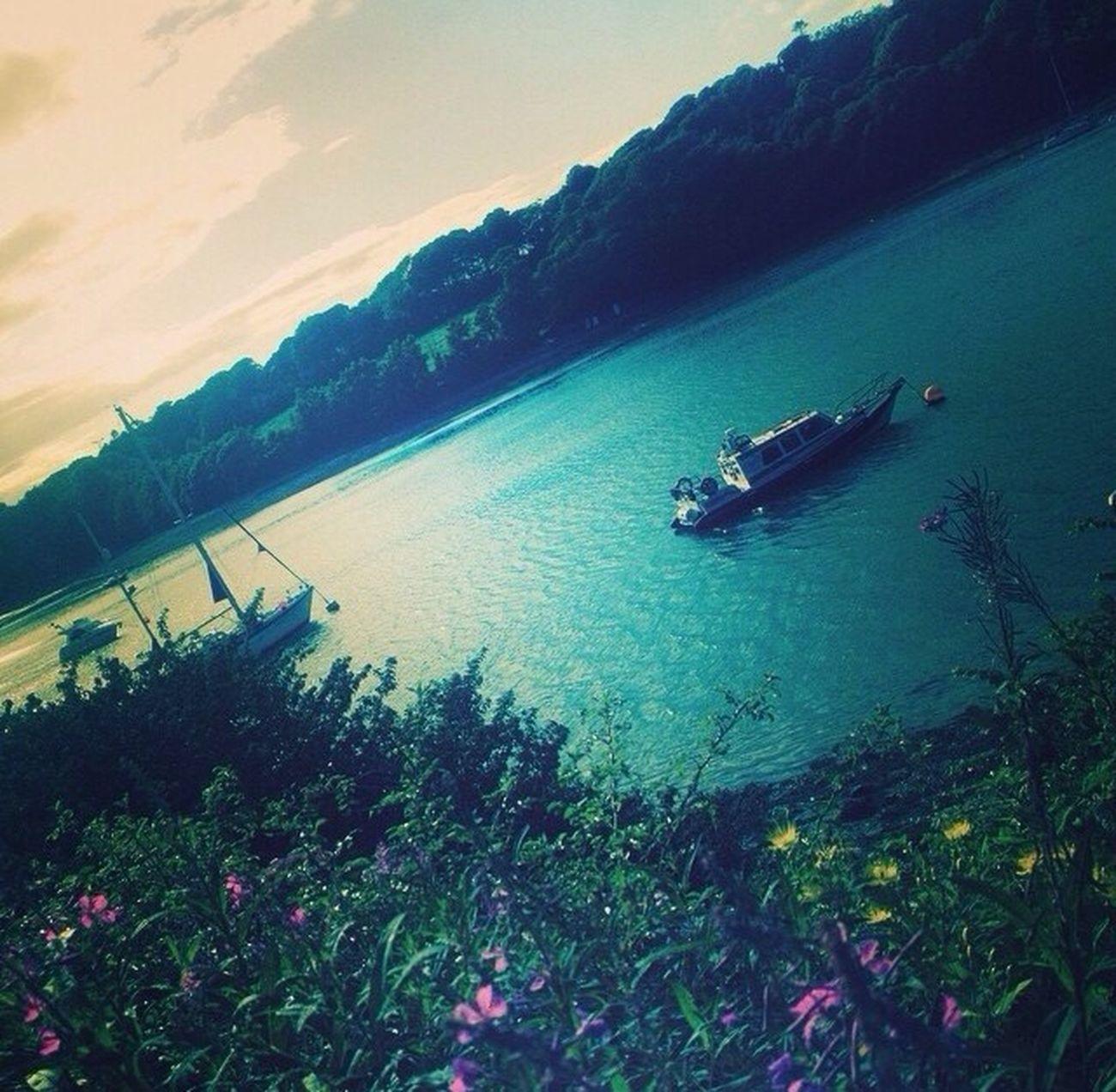 Piekny Water Scenery Boat Flowers Kwiaty Blue Sky Ireland Summer Lato