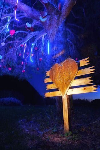 """❤️ """"Saint Valentine on steroids"""" is on my mind. What do you think? HAPPY VALENTINE'S DAY TO YOU ALL!! (The big heart is dedicated to my lovely wife) (1/30, f/4, EV-1.7, ISO800, 16(24)mm) Night Illuminated Tree Love Neon Nature Valentine's Day  Valentine Make Difference Colorful Light And Shadow Change Your Perspective Celebration Exceptional Photographs Togetherness Magic Happiness Blue Heart Hearts Nature_collection Mood Love Is In The Air Edited On IOS Pentax K-3"""