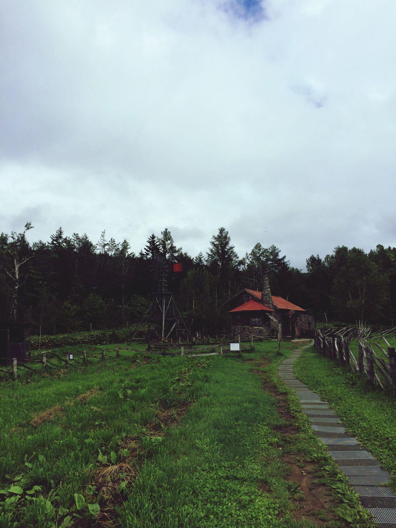 北の国にいます♪ 北海道 富良野