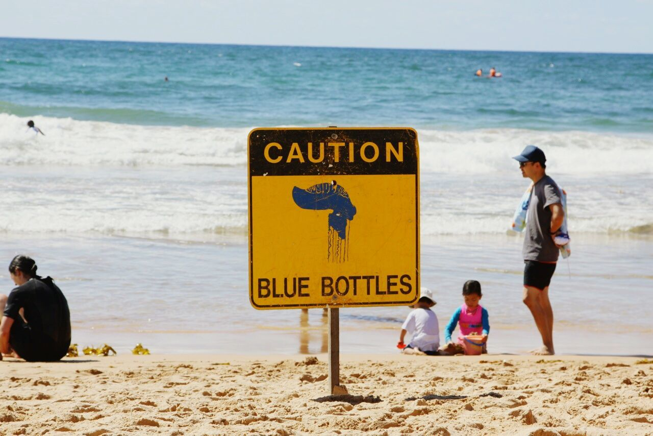 At Bondi Beach Sydney Australia Sydney, Australia Sydney Photography Bondibeach Blue Bottles Blue Bottle Caution ⚠️ Caution Sign Caution