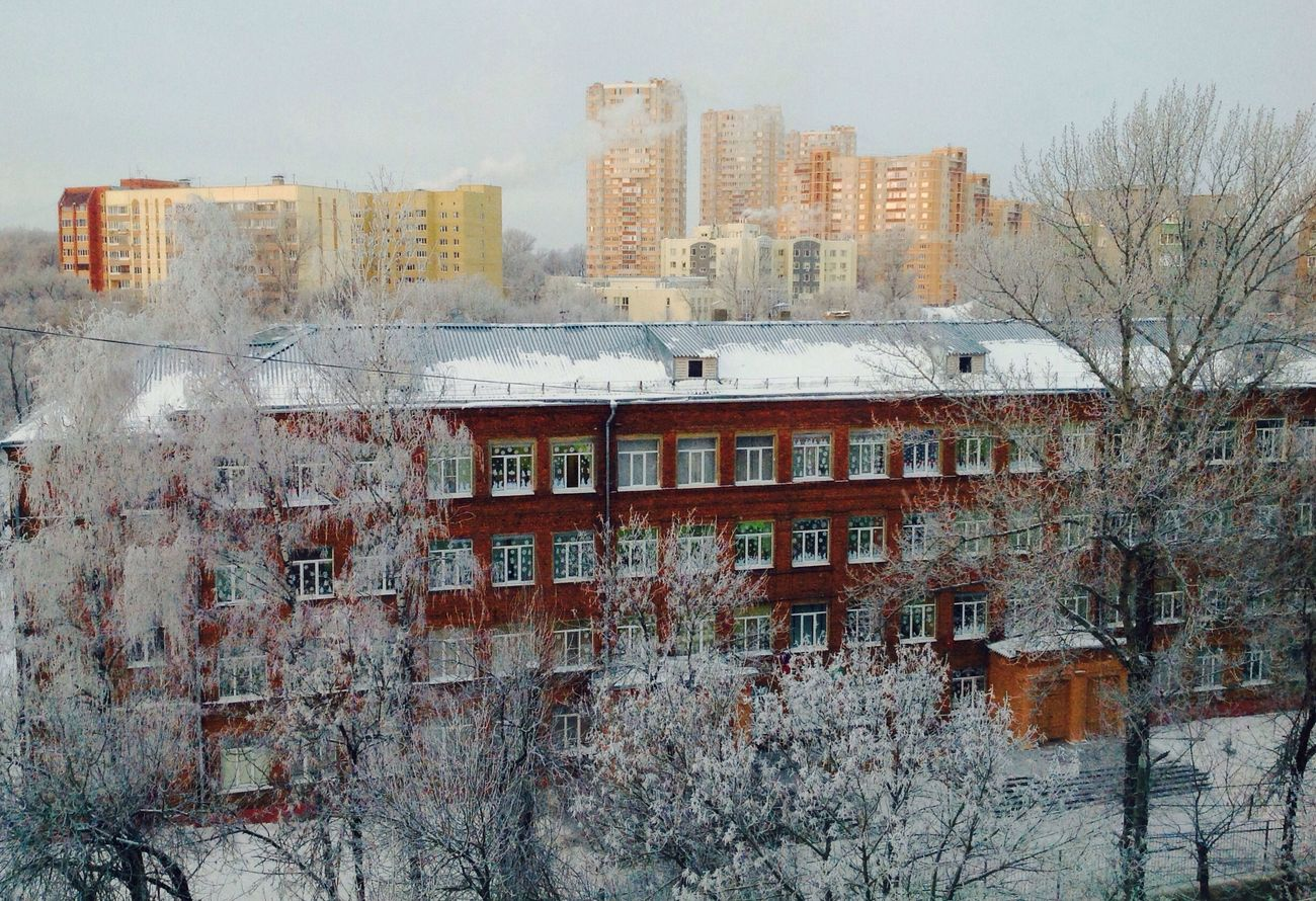 Architecture Building Exterior Built Structure City Residential Building No People Frosty Mornings From My Window Frosty Trees Day Tree Sky