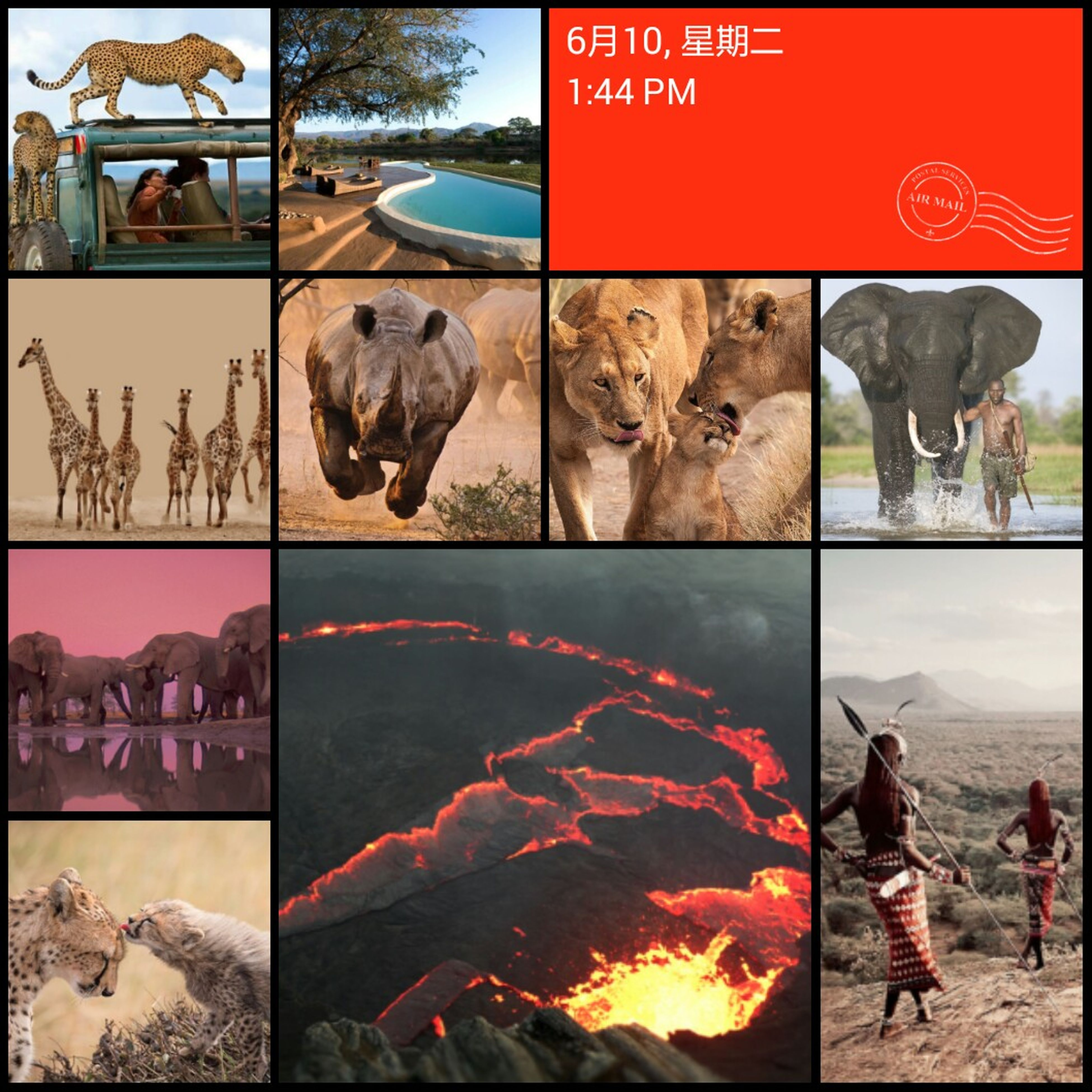 Wish i can be there right now? Africa Wild Animals