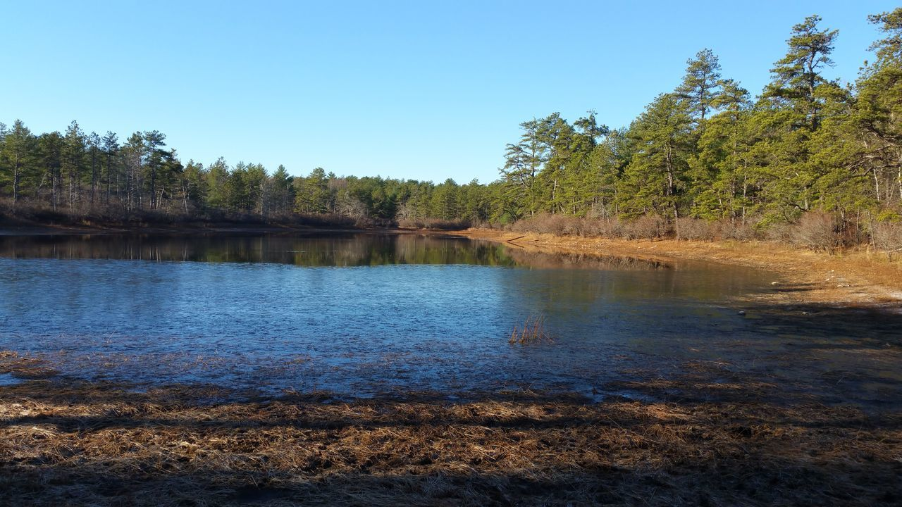 Torrey Pond DECEMBER2015 Early Winter in the Pine Barren Ice on the Pond