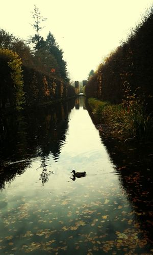 Wonderful Photography Hi Autumn