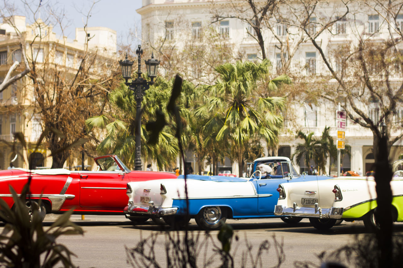 Carros waiting en Parque central American Cars Vintage Cars Cityscape Habana Havana, Cuba Parque Central, Cuba Citylife Colorful Cars Cuban Style Glamourous The Week On EyeEm