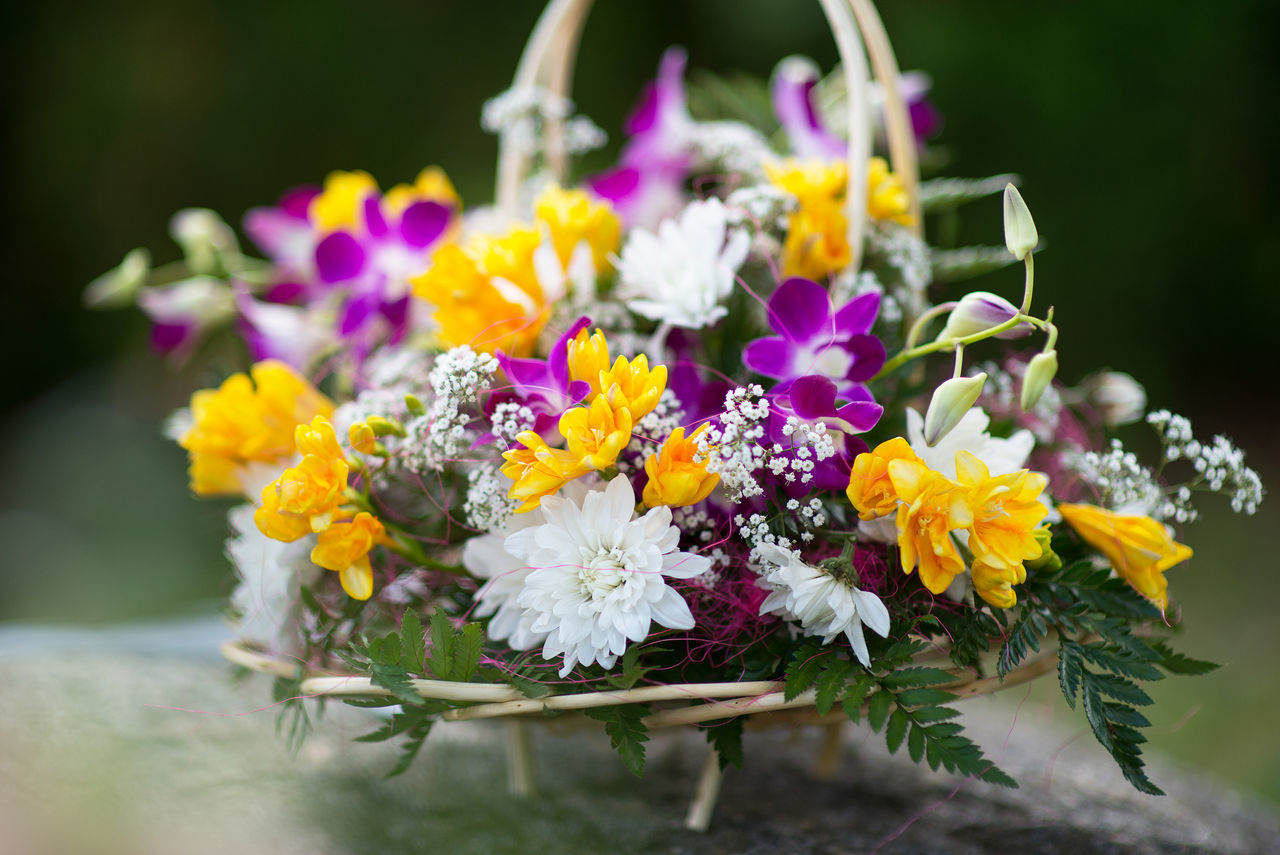 bouquet of multicolored flowers Backgrounds Beauty In Nature Bouquet Celebration Close-up Day Decor Flower Flower Head Focus On Foreground Fragility Freshness Green Multi Colored Nature No People Nosegay Outdoors Petal Plant Purple Flower Wedding White Flowers Yellow Yellow Flower