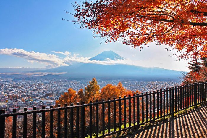 Nature Sky Mountain Built Structure Railing Tree Beauty In Nature Outdoors Growth Cityscape Architecture Building Exterior Day No People City Mountain Range Fujisan Kawaguchiko Fujimountain Japan Photography Beauty In Nature Nature Japan My Year My View