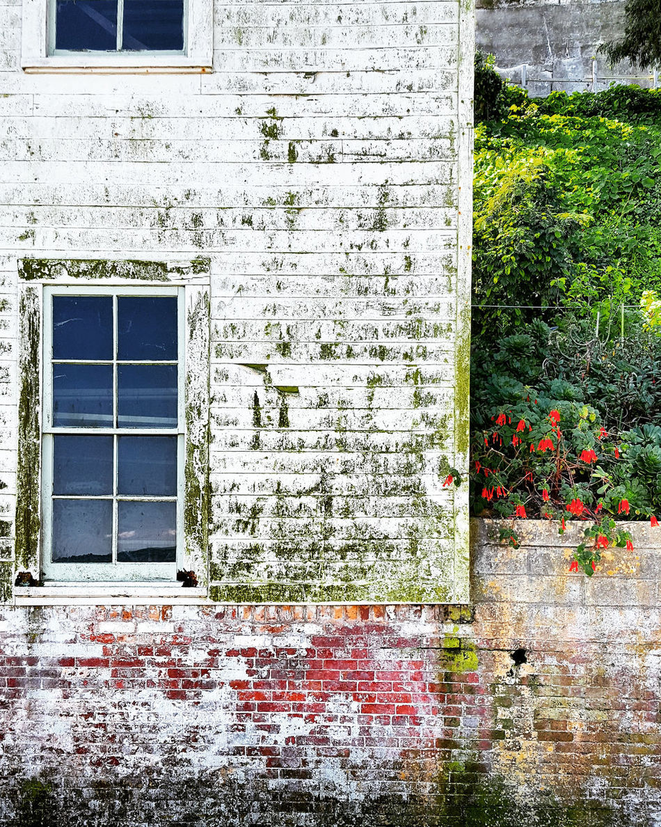 Window Architecture No People Outdoors Built Structure Building Exterior Alcatraz Old Buildings History Paint Decay Vintage