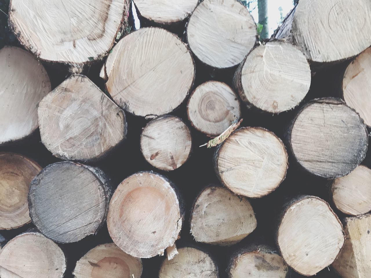 log, timber, firewood, stack, woodpile, lumber industry, forestry industry, deforestation, fuel and power generation, wood - material, wood, heap, abundance, fossil fuel, environmental issues, large group of objects, backgrounds, full frame, pile, textured, arrangement, tree ring, no people, day, outdoors, close-up, nature