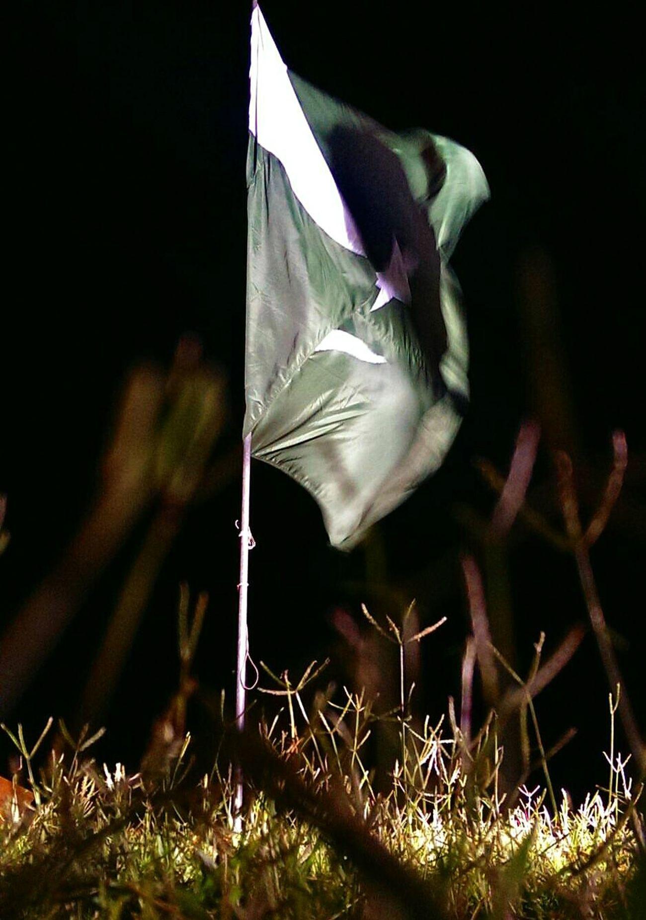 Nationalflag Pakistan Pakistani Pakistandiaries Pakistan Zindabad <3 Respect Honour Peace Peaceful Night Nightphotography Night Shot Nationaldaycelebrations Grass No People Nature