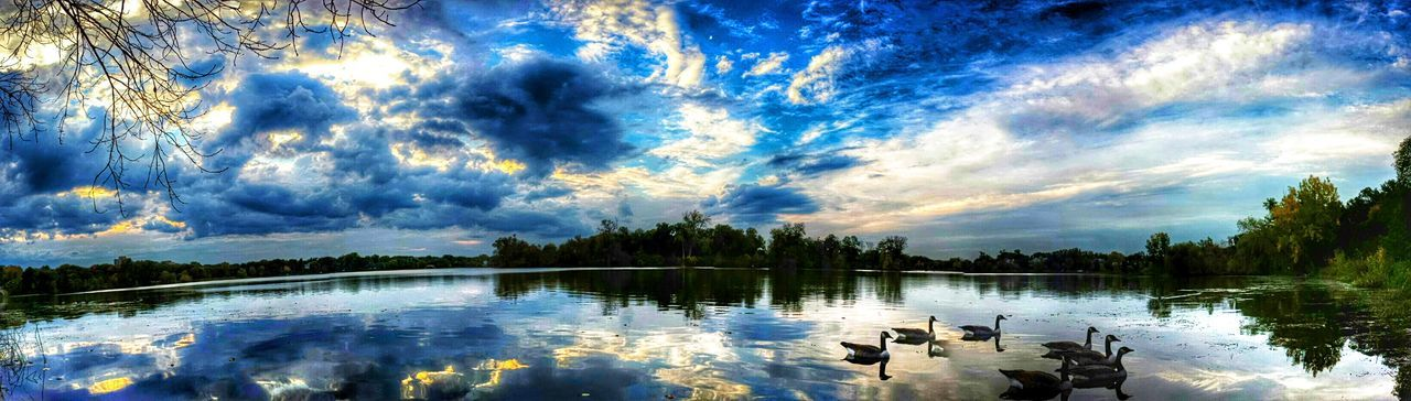 Lake Of The Isles Geese City Of Lakes UptownMPLS Urban Landscape Sky And Clouds Lowry Hill District Landscapes Urbanscape Minneapolis