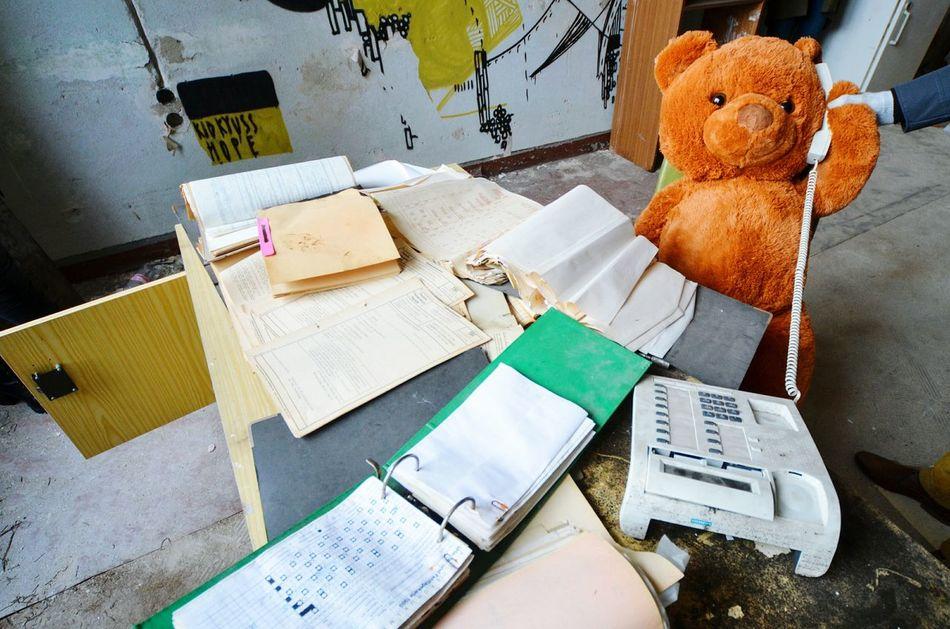 Beautiful stock photos of teddy bear, Abandoned, Animal Representation, Architecture, Berlin