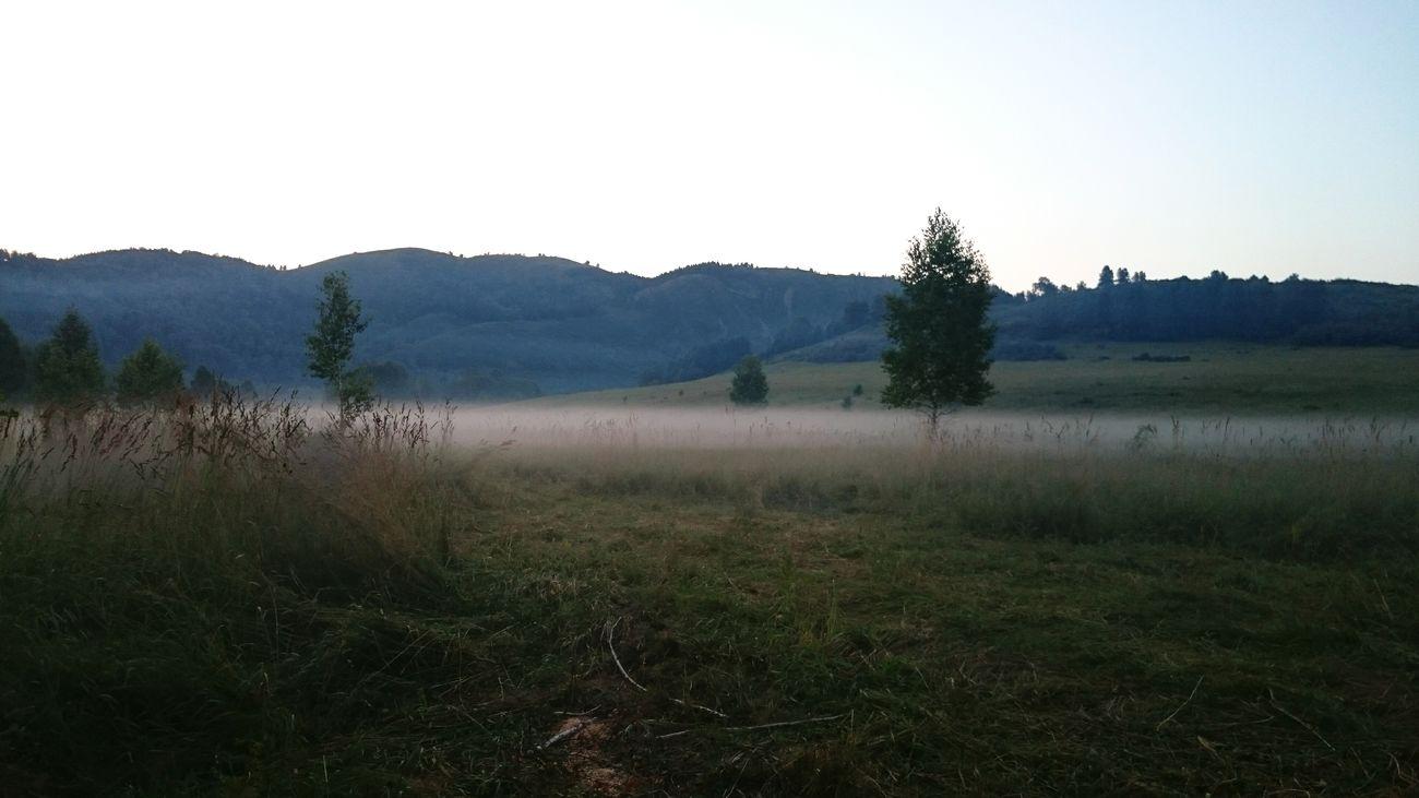 Россия белаярека туман