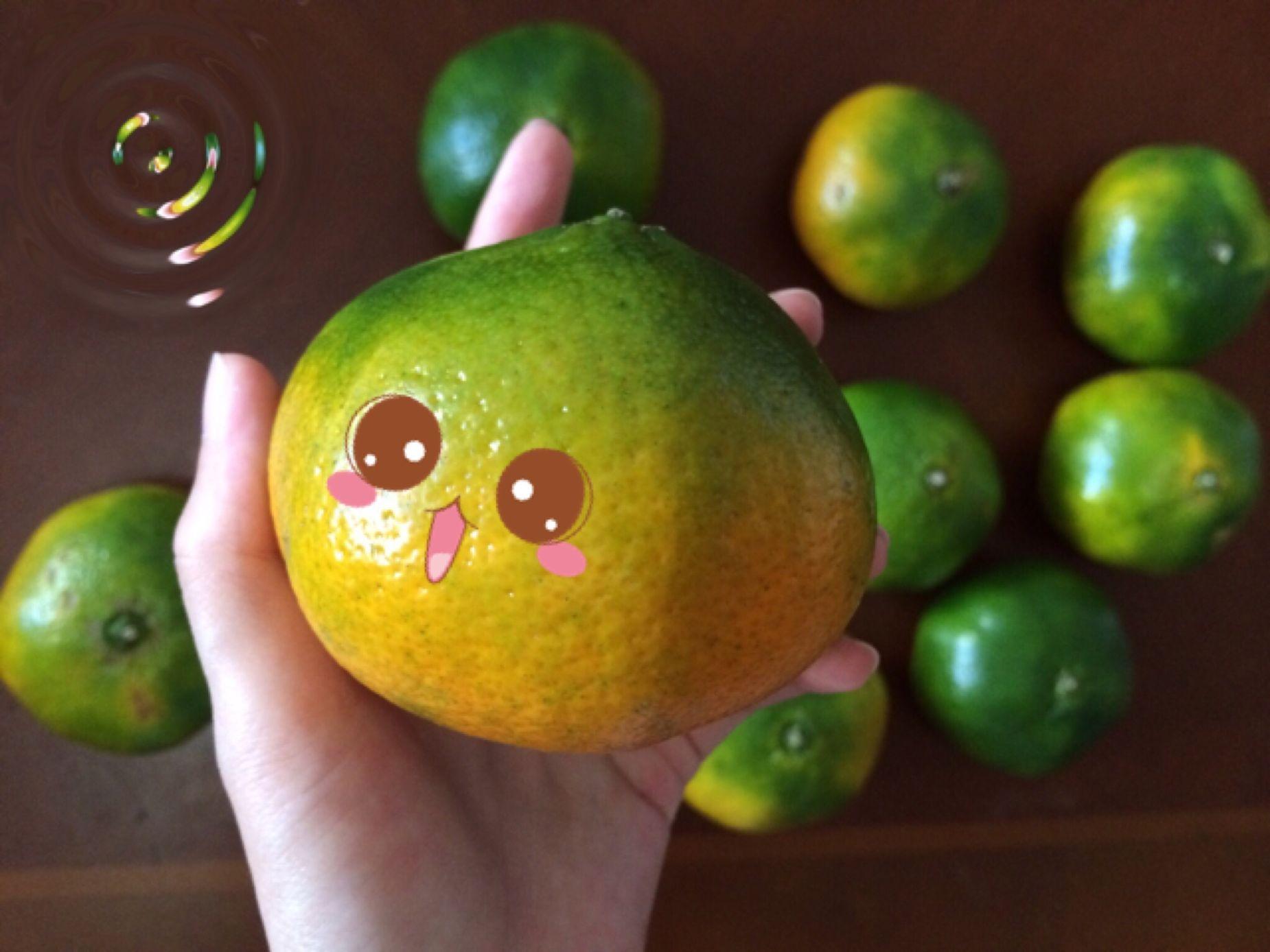 橘子 柑橘 可爱 Cute