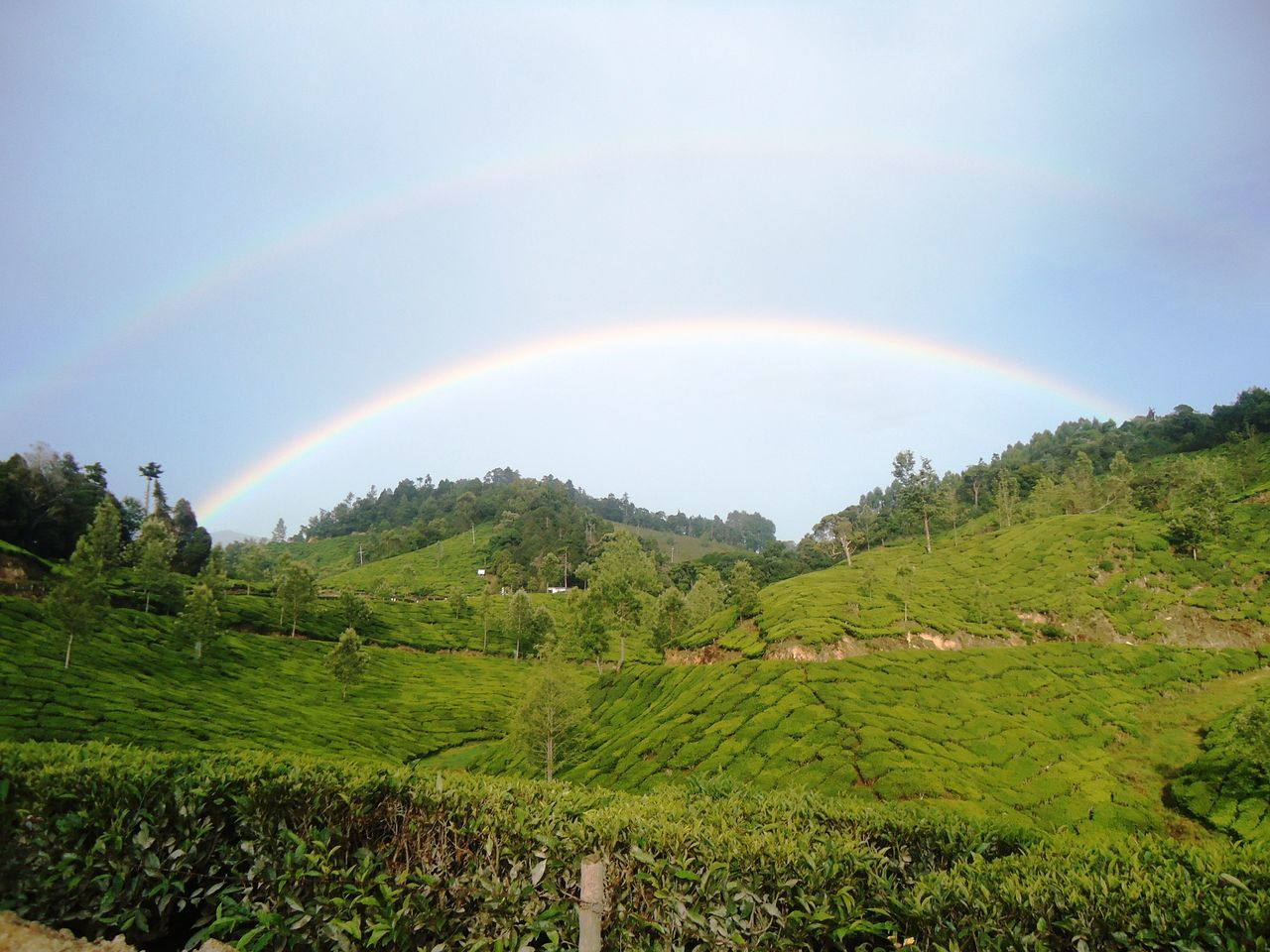 Beauty In Nature Curve Day Double Rainbow Double Rainbows Grass Green Color Growth Idyllic Landscape Multi Colored Natural Arch Nature No People Outdoors Rainbow Refraction Scenics Sky Tranquil Scene Tranquility Tree