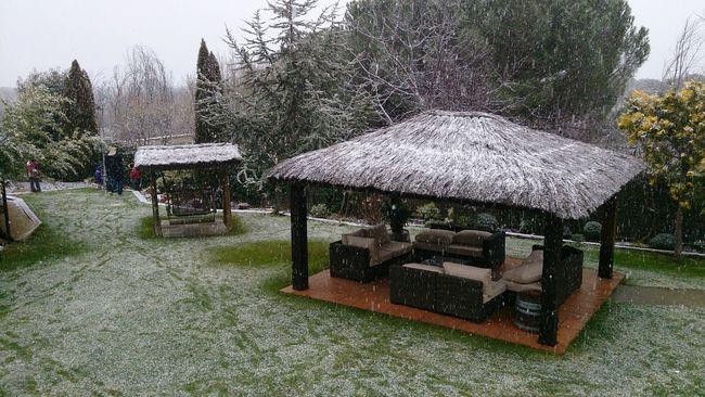 En La Nieve! Madrid Nieve.