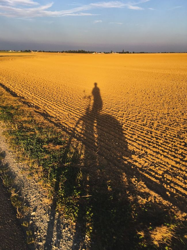 My Favorite Place On My Bike Early Morning Going At Work Sunset Shadow Sunlight Landscape Field Sky Nature Focus On Shadow Escapism Solitude