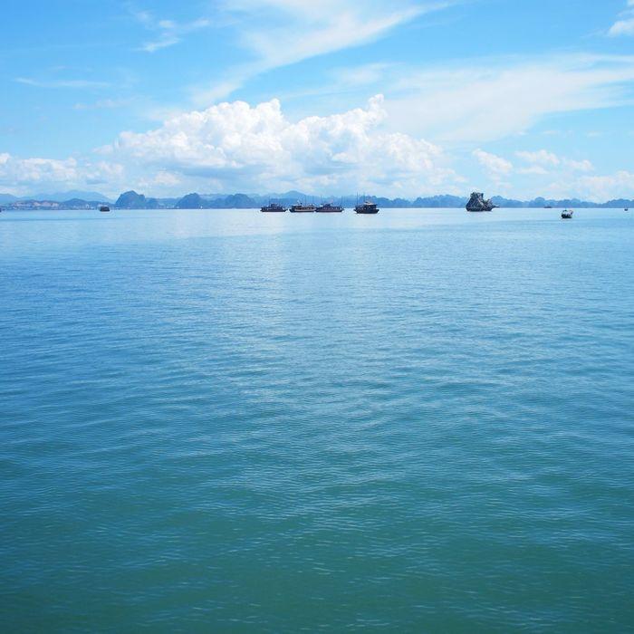 Halong Bay  Vietnam Travel Sea