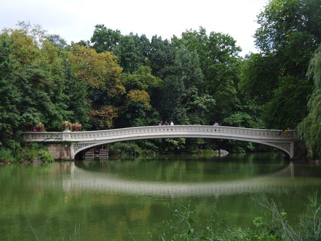 Central Park Nature Peace And Quiet Landscape Memories Missamerica Bridge Taking Photos Lake Peoplephotography