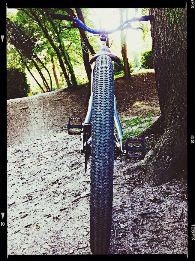 Dirt Bike Velo Dirt Velo Ride Dirt