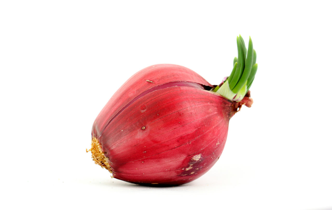 red onion Close-up Cut Out Day Food Food And Drink Freshness Healthy Eating No People Onion Overripe Banana Red Onion Red Onions Spanish Onion Studio Shot Vegetable White Background