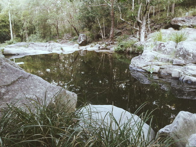 Nature Reflections Get Outdoors Escaping Vscocam VSCO Water Reflections Blessed  Family Time Exploring Trees Nature_collection Things I Like Time With Friends Showcase: April 2016